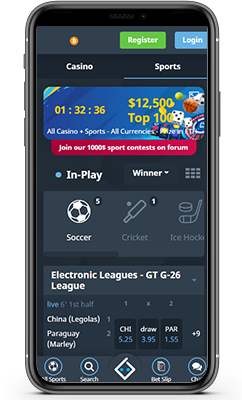 Bitsler Sportsbook Review 2021 – Grow Your Bitcoin Earnings