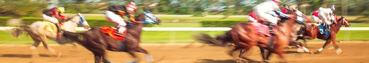 bitcoin horse racing betting guide