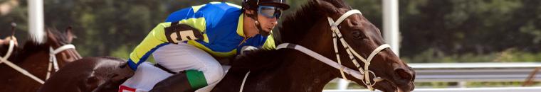 bitcoin horse racing betting online
